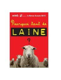 DVD Revue Scoute 2015 : Pourquoi tant de laine?